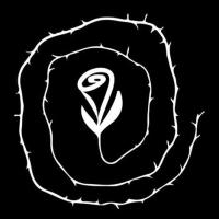 O Labirinto da Rosa
